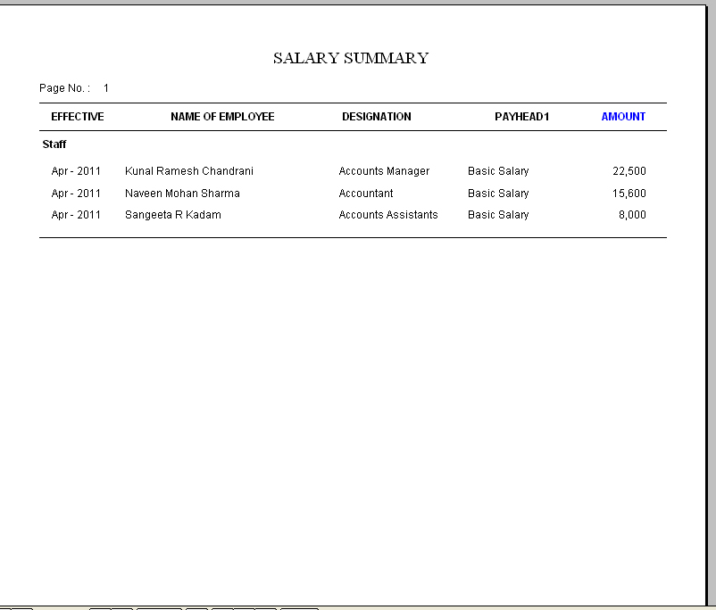Employee Payroll Program HR Admin Management Software – Payroll Slip